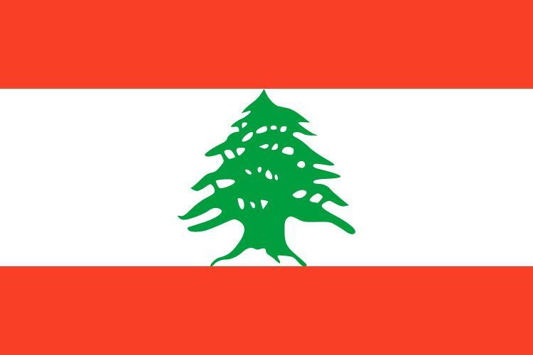 ливан визовый режим таможенные правила