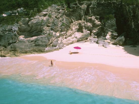 багамы виза