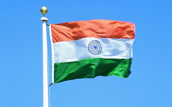 виза в индию на полгода