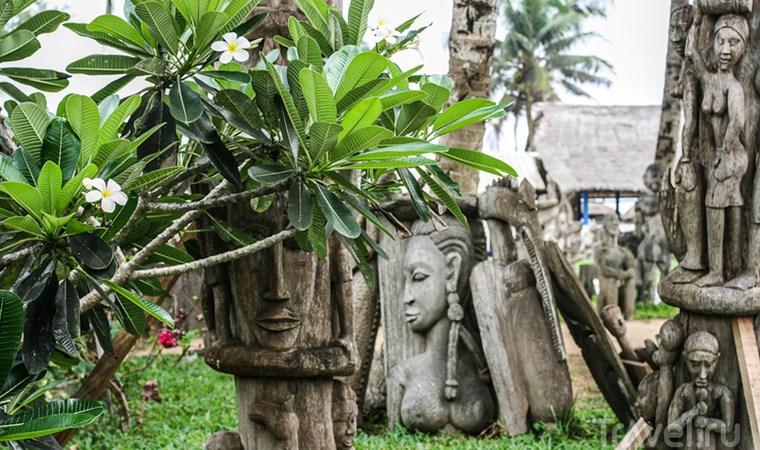 оформление визы в Кот-д'Ивуар