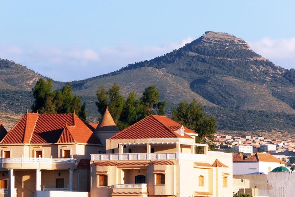 получение визы в Алжир