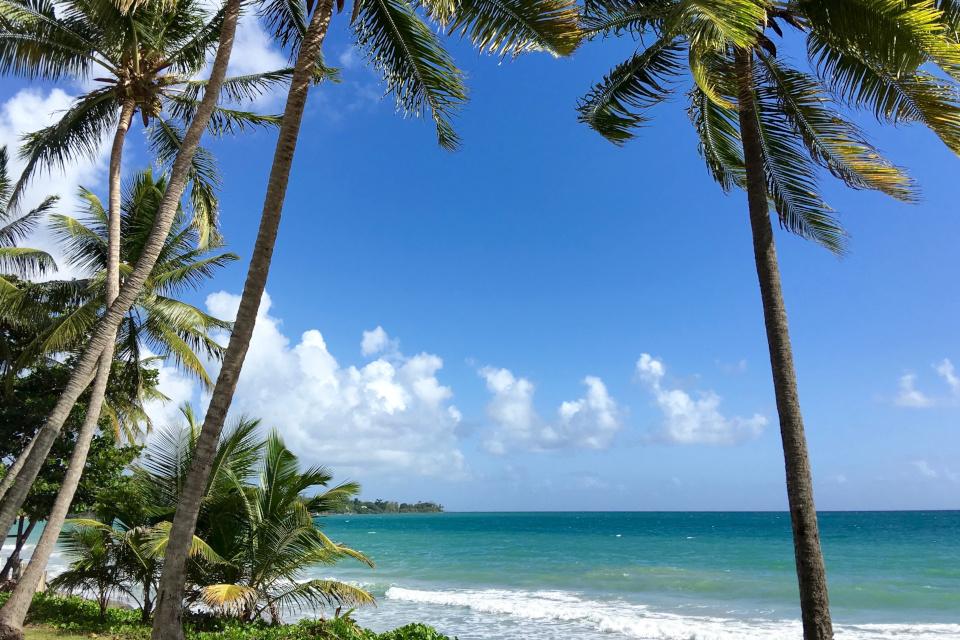 оформлення візи на Мартиніку